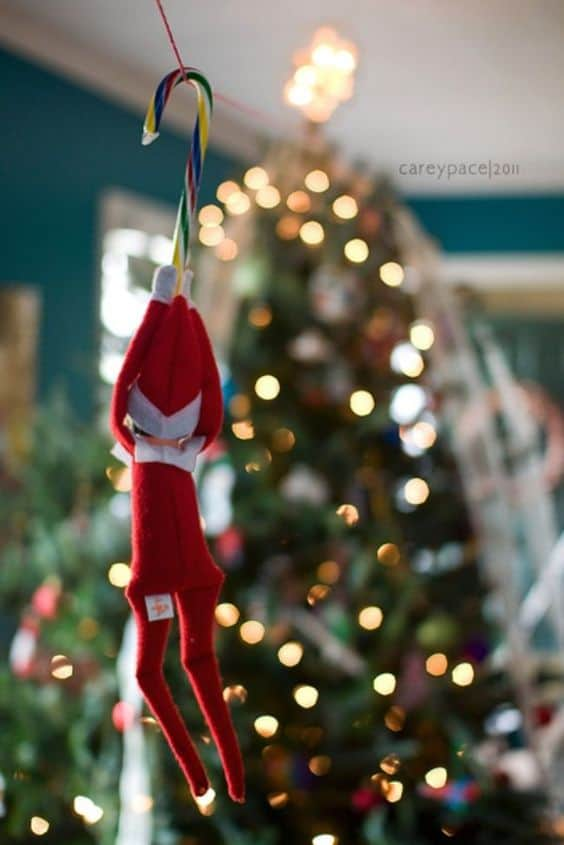 126.Elfie Zip-Lining with a Candy Cane