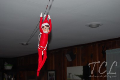 77. Elfie has fun Zip-Lining