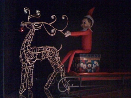 104. Elfie and his Reindeer Sled