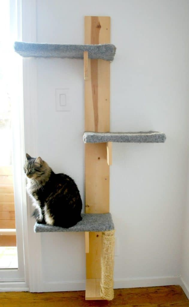 SILLY PEARL PRESENTS EPIC DIY CAT TREE