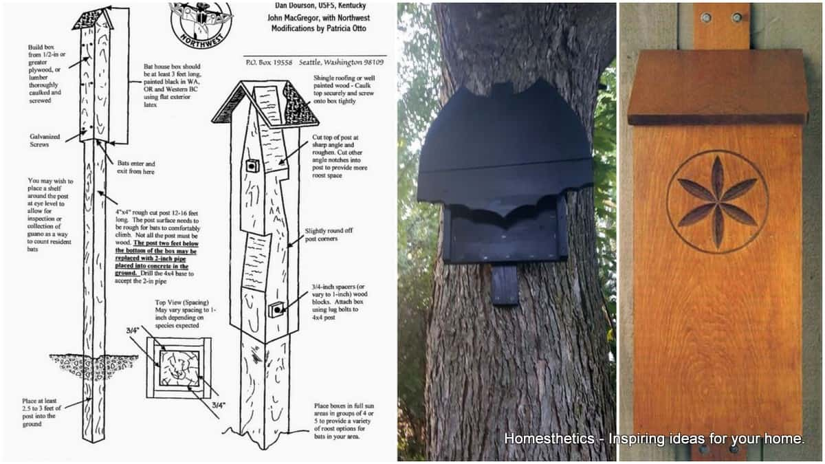 39 FREE DIY Bat House Plans to Shelter the Natural Pest Control Large Bat House Plans on large workbench plans, large barn plans, large chicken tractor plans, large worm bin plans, large pergola plans, large bat doors, large bat clip art, sears craftsman style house plans, grey squirrel house plans, large picnic table plans, large bats in philippines, finished basement ranch floor plans, box wood duck house plans, bat box plans, bat shelter plans, large animals, hummingbird house plans, large cupola plans, large carport plans, butterfly house plans,