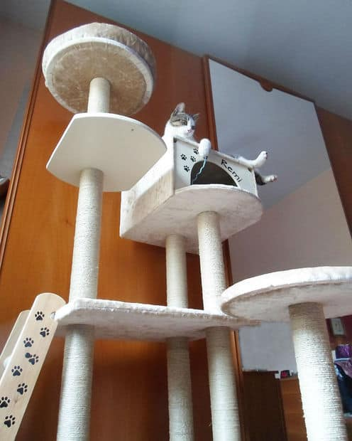 BRILLIANT DIY CAT TREE ON INSTRUCTABLES