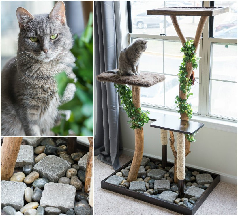 19 adorable free cat tree plans for your furry friend for Cat climber plans