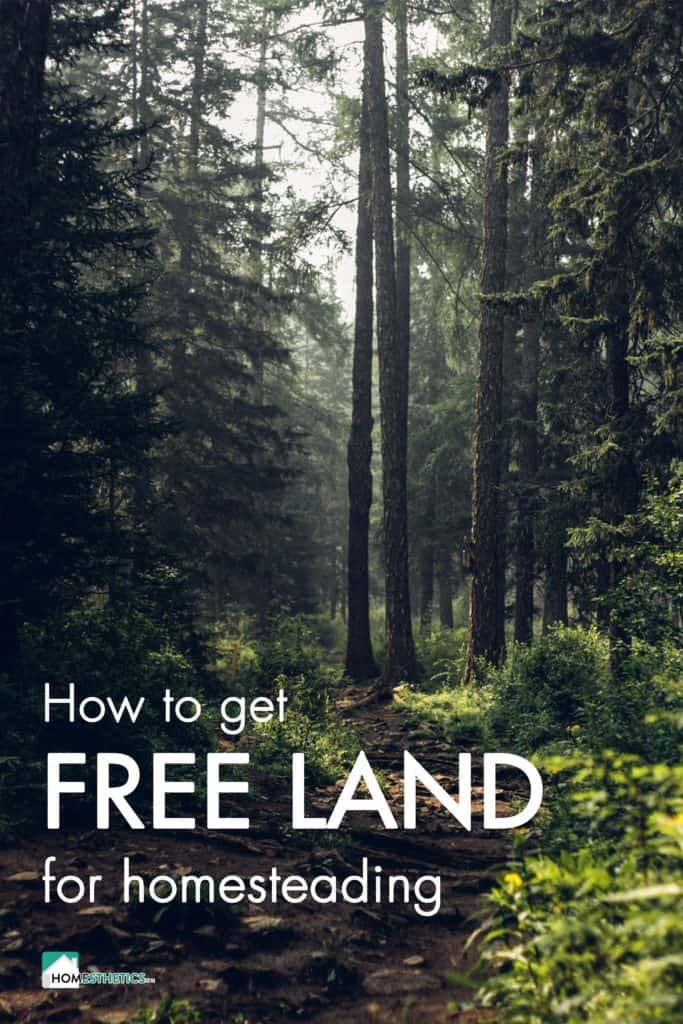 17 US Places Where You Can Find Free Land for Homesteading Today