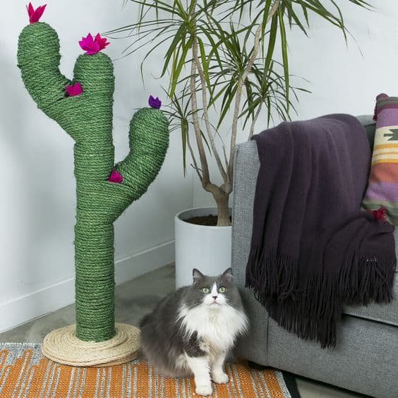 ADORABLE CACTUS POST IS A KIND OF CACTUS TREE