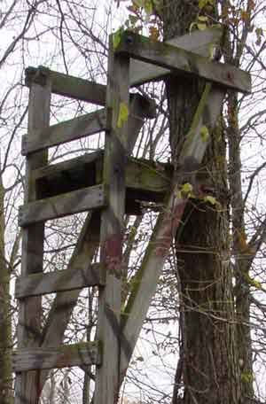 21. BASIC LADDER STAND