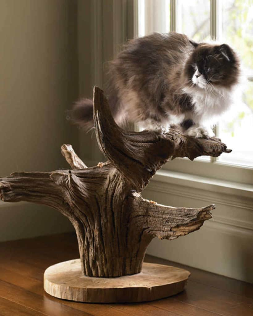 SMALL DIY CAT TREE DOUBLES AS HOME DECOR