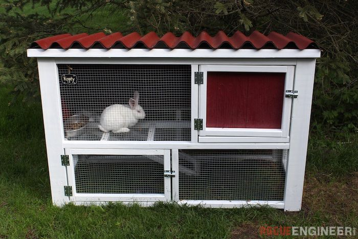 ROGUE ENGINEER SHARES A FREE RABBIT HATCH PLAN