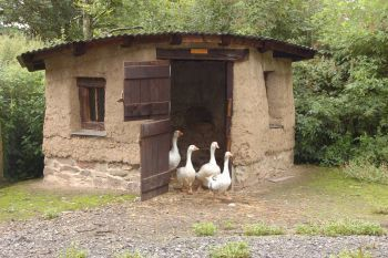 THE COB-STYLE DUCK HOUSE