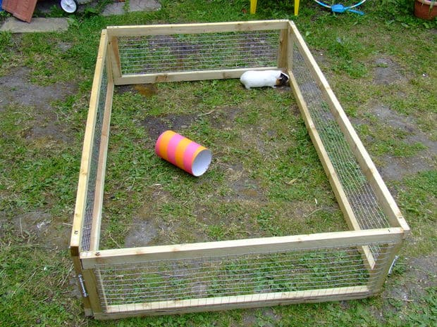 23 epic homemade diy guinea pig cage designs to build