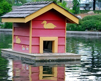THE FLOATING DUCK HOUSE
