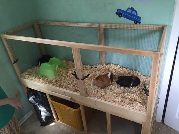 GUINEA PIG CAGE WITH EASY CLEANING