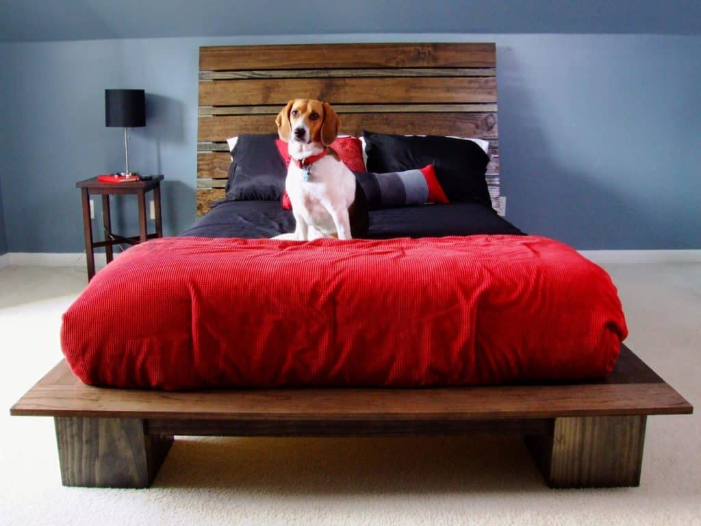 MODERN STYLE PLATFORM BED WITH HEADBOARD