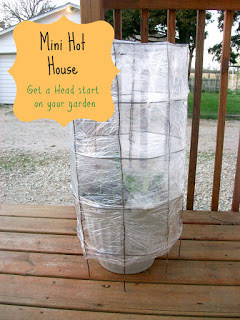 INCREDIBLY SIMPLE DIY MINI HOTHOUSE
