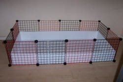 C&C CAGE FROM GUINEA PIG CAGES