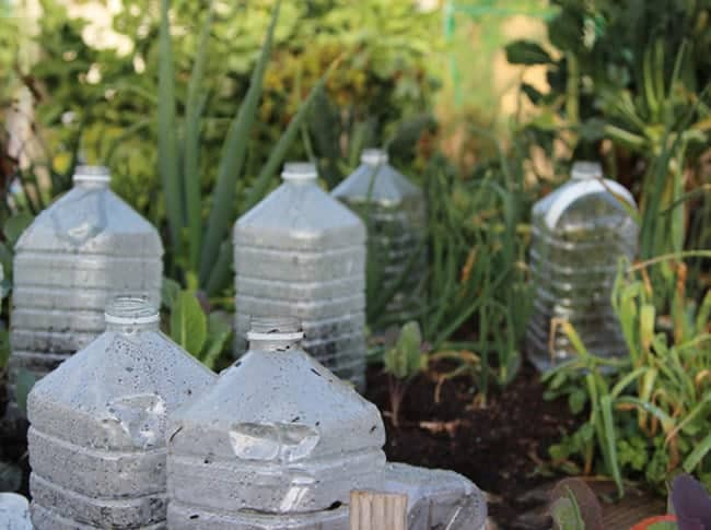 EASY DIY BOTTLE GREENHOUSES FOR YOUR SEEDLIN