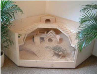 23 epic homemade diy guinea pig cage designs to build for Diy guinea pig hutch