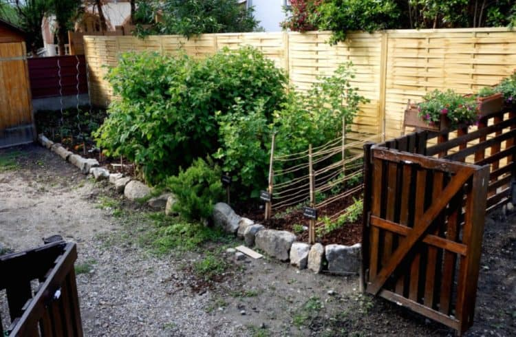PALLET FENCE IDEA FOR A SMALL GARDEN