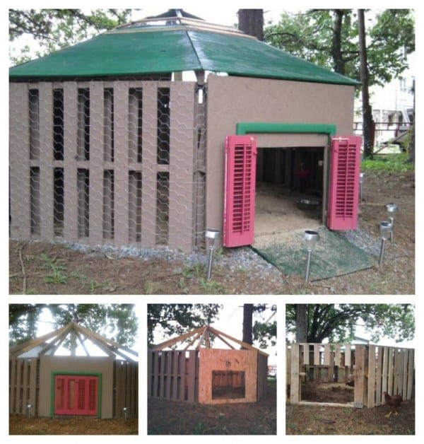 THE ECONOMICAL DUCK AND CHICKEN COOP