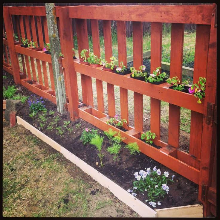 PALLET FENCE DECKED UP IN HERBS AND FLOWERS