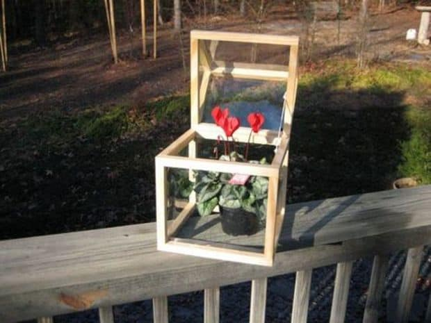 EASY TO MAKE COUNTERTOP GREENHOUSE