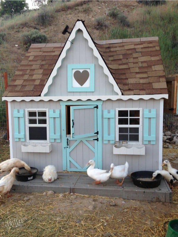 43 free diy duck coop plans duck houses plans for enthusiasts the playhouse duck house solutioingenieria Choice Image