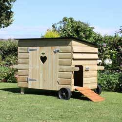 THE GAGGLE DUCK AND GOOSE HOUSE