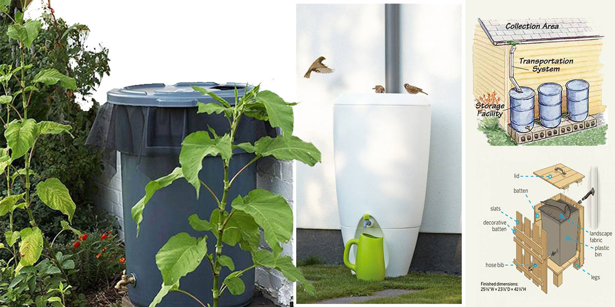 & 37 Awesome DIY Rainwater Harvesting Systems You Can Actually Build