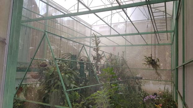 A HIGHLY DETAILED DIY GREENHOUSE PROJECT