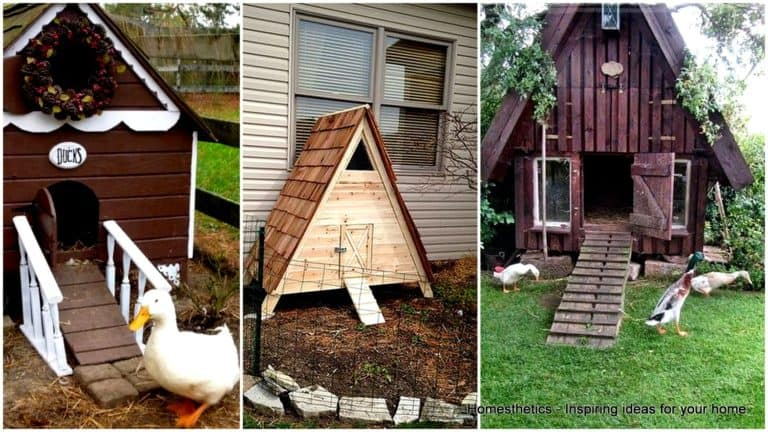 43 FREE DIY Duck Houses Plans and Duck Coop Plans to Build Now
