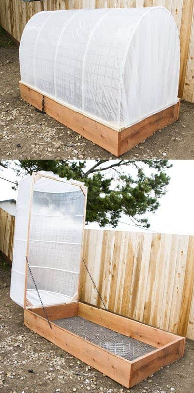 LEARN HOW TO BUILD THIS UNIQUE DIY GREENHOUSE WITH A REMOVABLE TOP