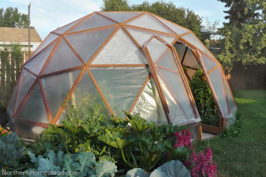 CREATE THIS INCREDIBLY COOL GEO DOME GREENHOUSE FOR YOUR BACKYARD