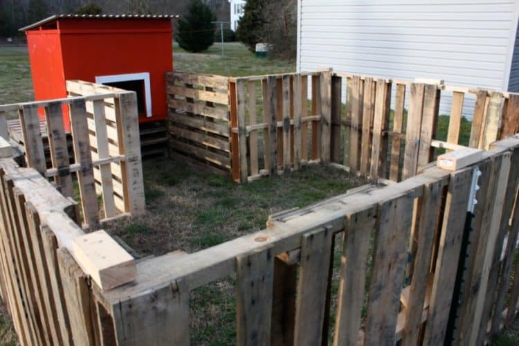 DIY PALLET FENCE FOR YOUR POULTRY