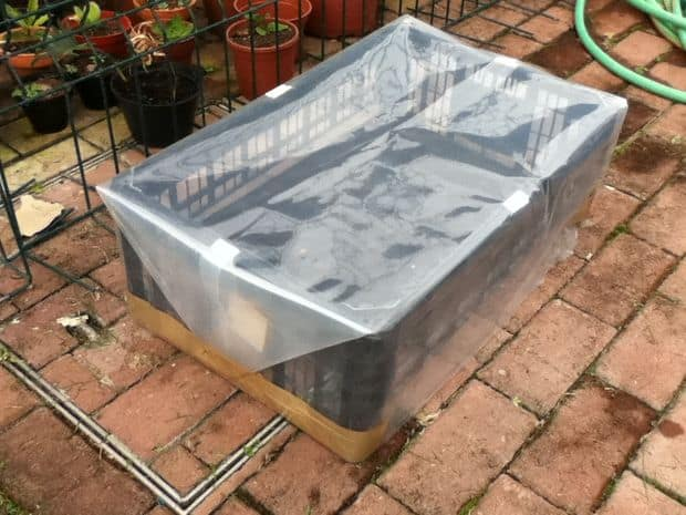 MAKE AN INEXPENSIVE GREENHOUSE WITH A PLASTIC FRUIT BASKET