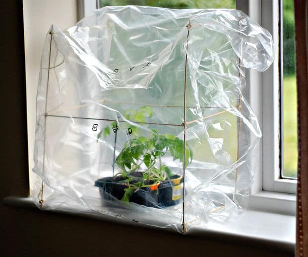 LEARN HOW TO BUILD THIS TINY WINDOWSILL GREENHOUSE USING UPCYCLED MATERIALS