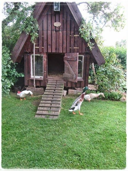 THE CABIN DUCK HOUSE