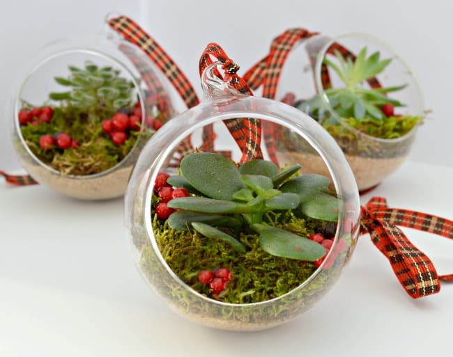 89. Learn How to Make These Amazing Terrarium Ornaments