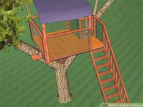 THE DETAILED TREE HOUSE