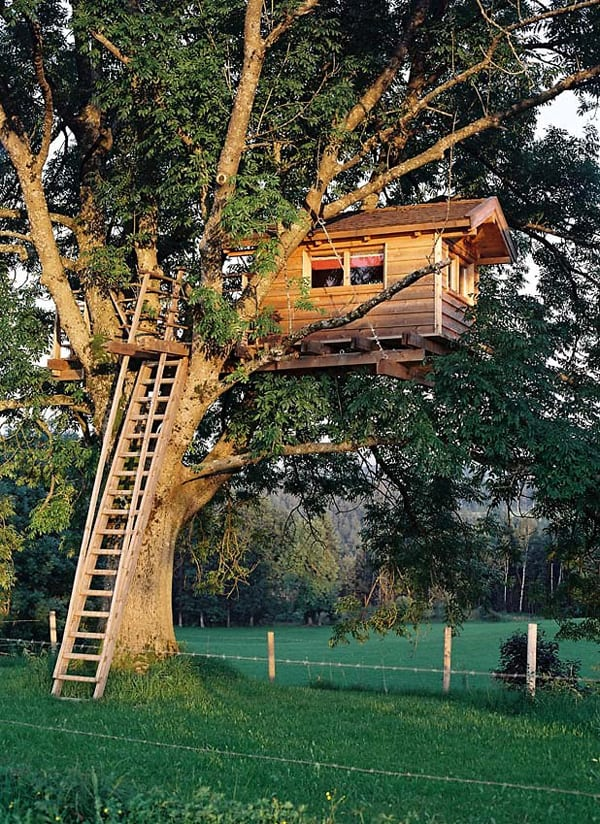 THE OFF-GRID TREE HOUSE