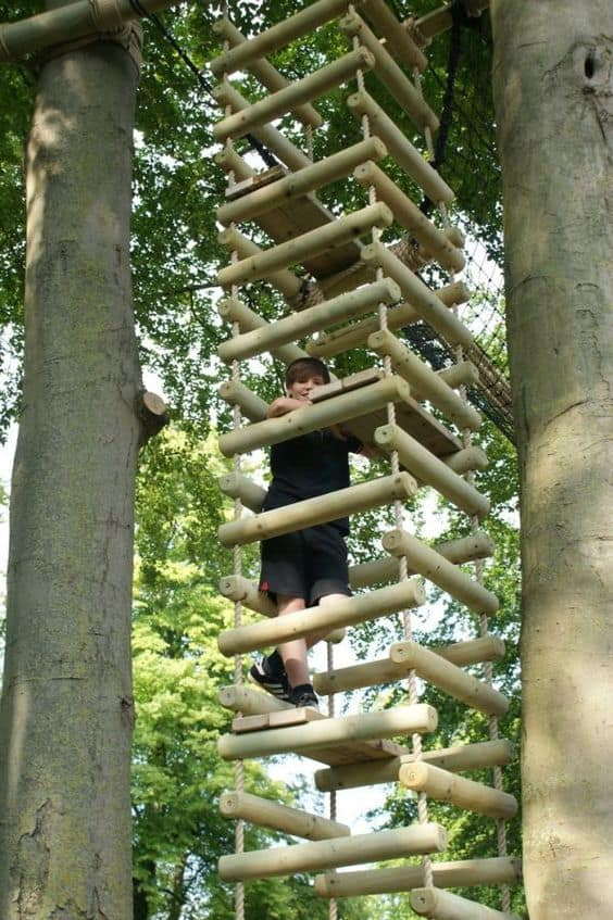 THE FOUR-SIDED LADDER TREE HOUSE