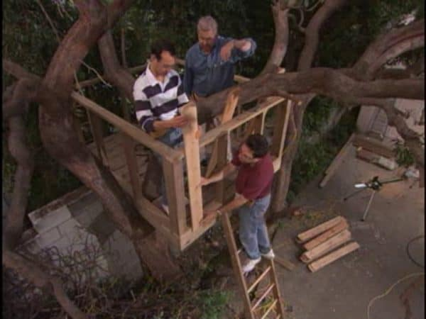 THE UNCOVERED TREE HOUSE