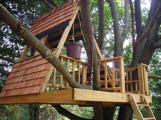 THE A-FRAME TREE HOUSE