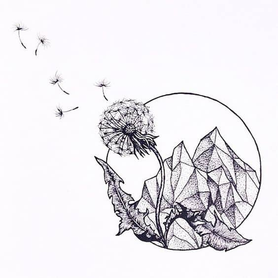 Make a wish draw a dandelion