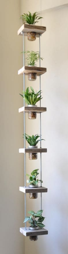 Hang Your Plants Vertically