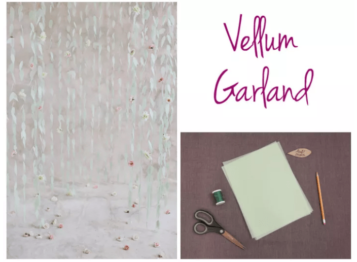 VELLUM BACKDROP