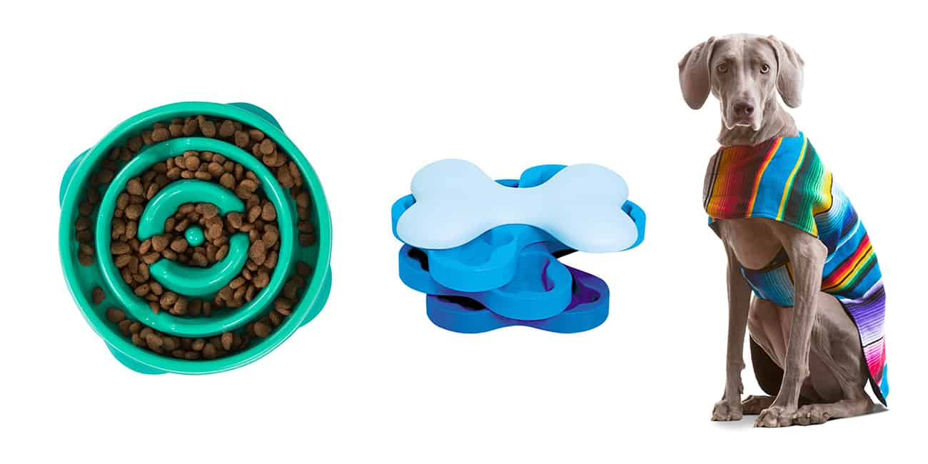17 Epicly Unusual Dog Gifts for Your Furry Friend