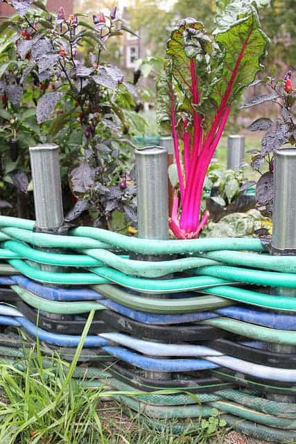 Garden Hoses Woven Into an Edging