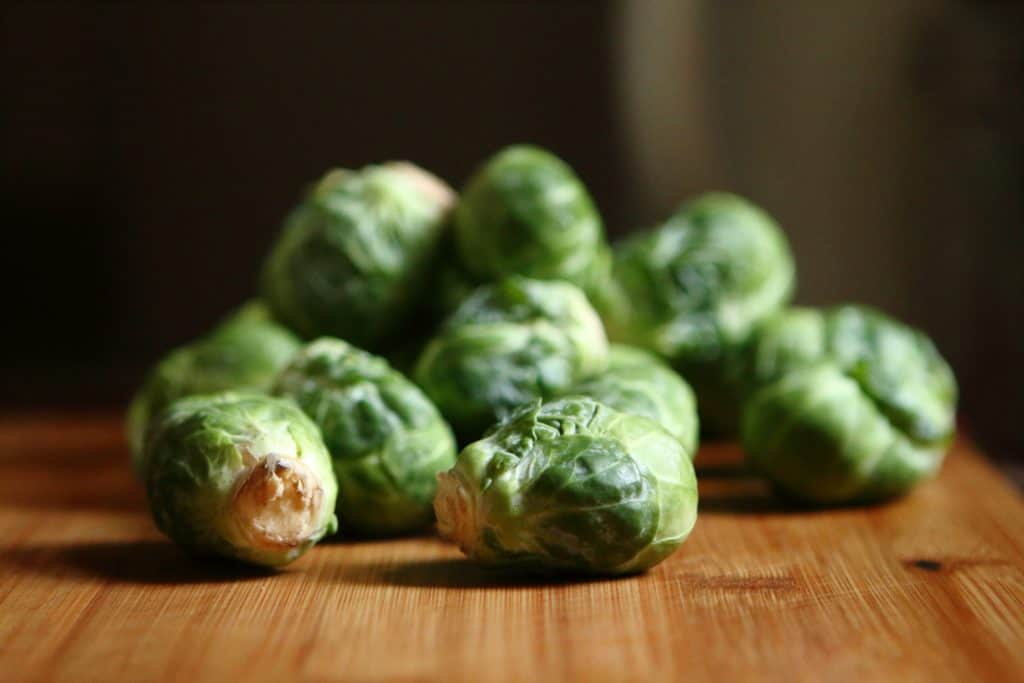 40 BRUSSEL SPROUTS greenhouse plant