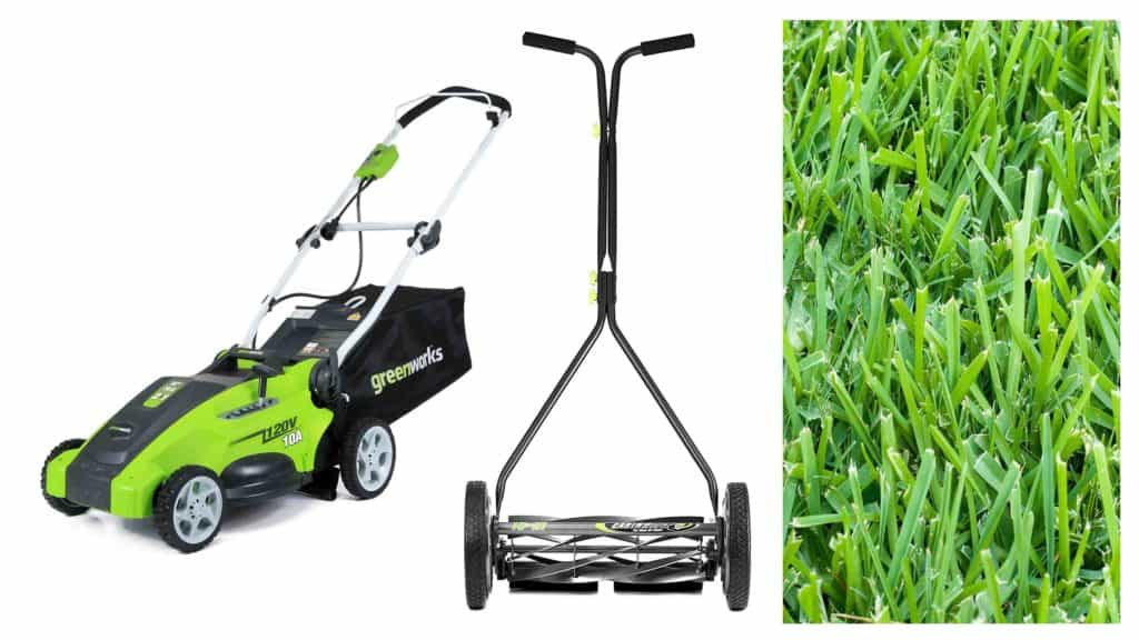 The 5 Best Lawn Mowers For St Augustine Grass Right Now