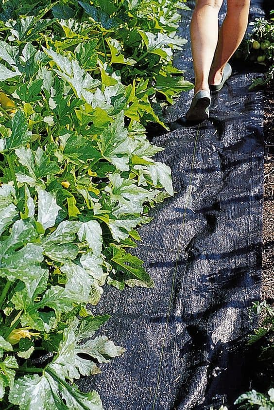 best weed barierrs and landscaping fabric